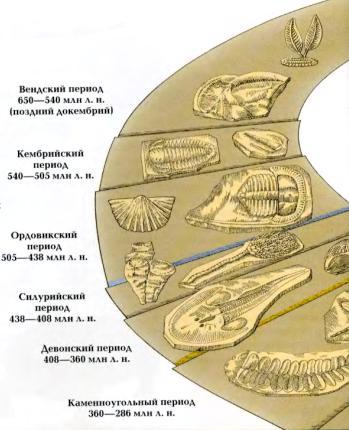 Периоды вымирания животных и динозавров