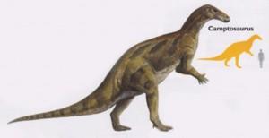 Камптозавр