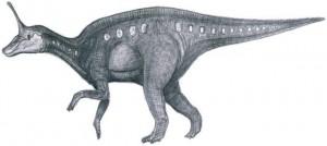 Циньтаозавр