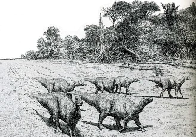 Следы динозавров