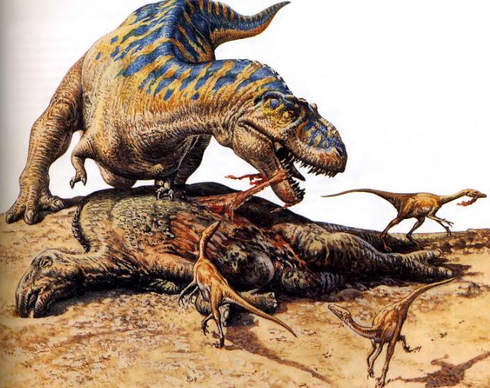 Тираннозавры в картинках