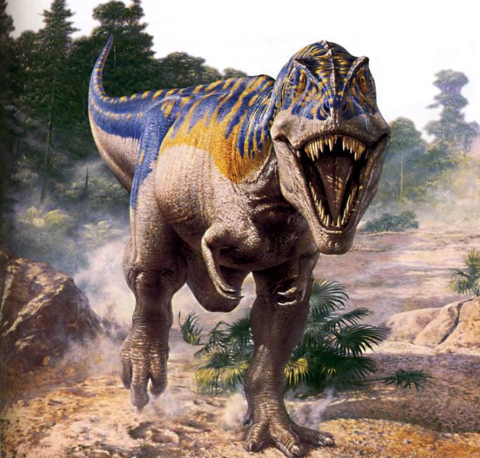 Крупный теропод тираннозавр