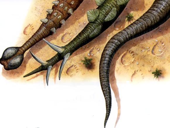 Хвост динозавров