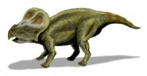 Протоцератопс