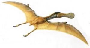 Орнитохейрус
