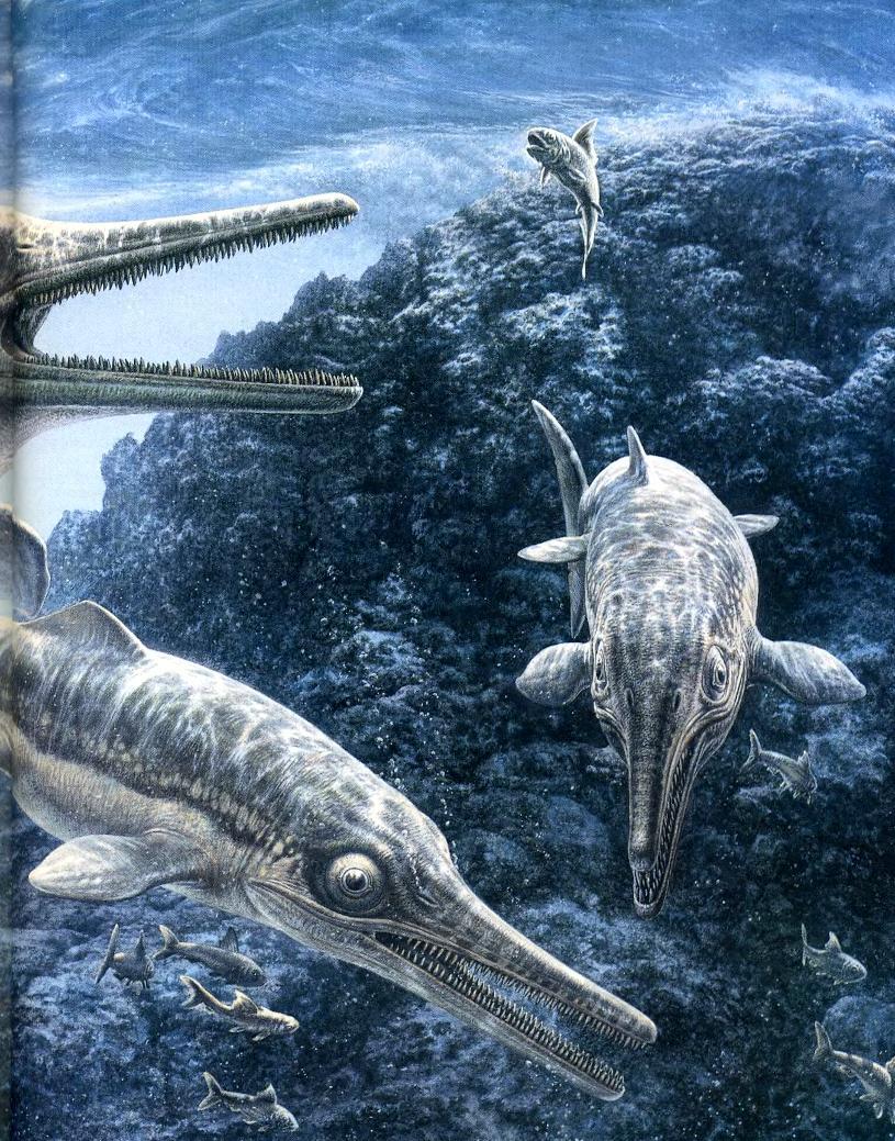 Морской мир динозавров
