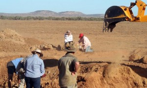 Раскопки динозавров