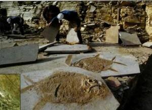 Остатки рыбы юрского периода