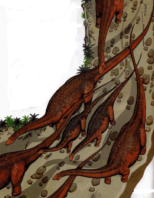 Стадо сальтазавров