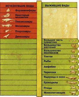 Исчезнувшие виды и выжившие виды
