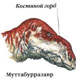 Муттабурразавр