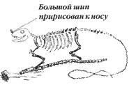Одно из первых изображений игуанодона