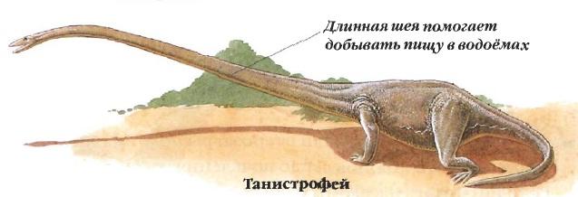 Танистрофей