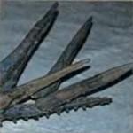 Костные пластины