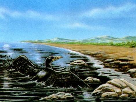 Ад для морских птиц