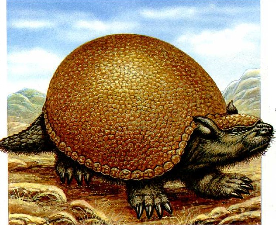 the modern armadillo and the prehistoric glyptodon The amphimachairodus, an early member of the cat family, was 13m in length and weighed an estimated 490kg (photo by sky tv/the guardian) the ice age giant ground sloth (megatherium) stood a colossal 55m high meanwhile the glyptodon is a prehistoric relative of the modern armadillo – albeit one the size of a vw beetle.