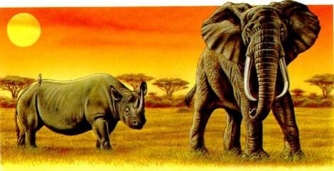 Носороги и африканские слоны