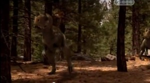 Бои динозавров