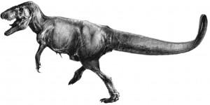 Тираннозавриды